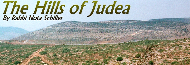THE HILLS OF JUDEA by Rabbi Nota Schiller