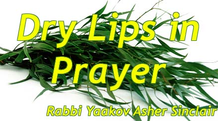 Dry Lips in Prayer - Rabbi Yaakov Asher Sinclair