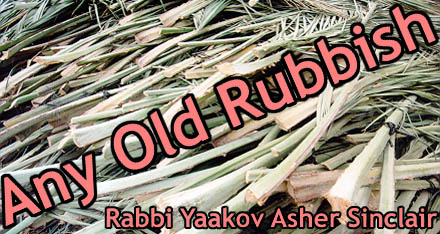 Any Old Rubbish - Rabbi Yaakov Asher Sinclair