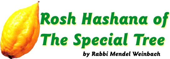 Rosh Hashana of the Special Tree by Rabbi Mendel Weinbach