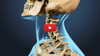 cervical-spine-range-motion1