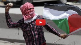 GazaB