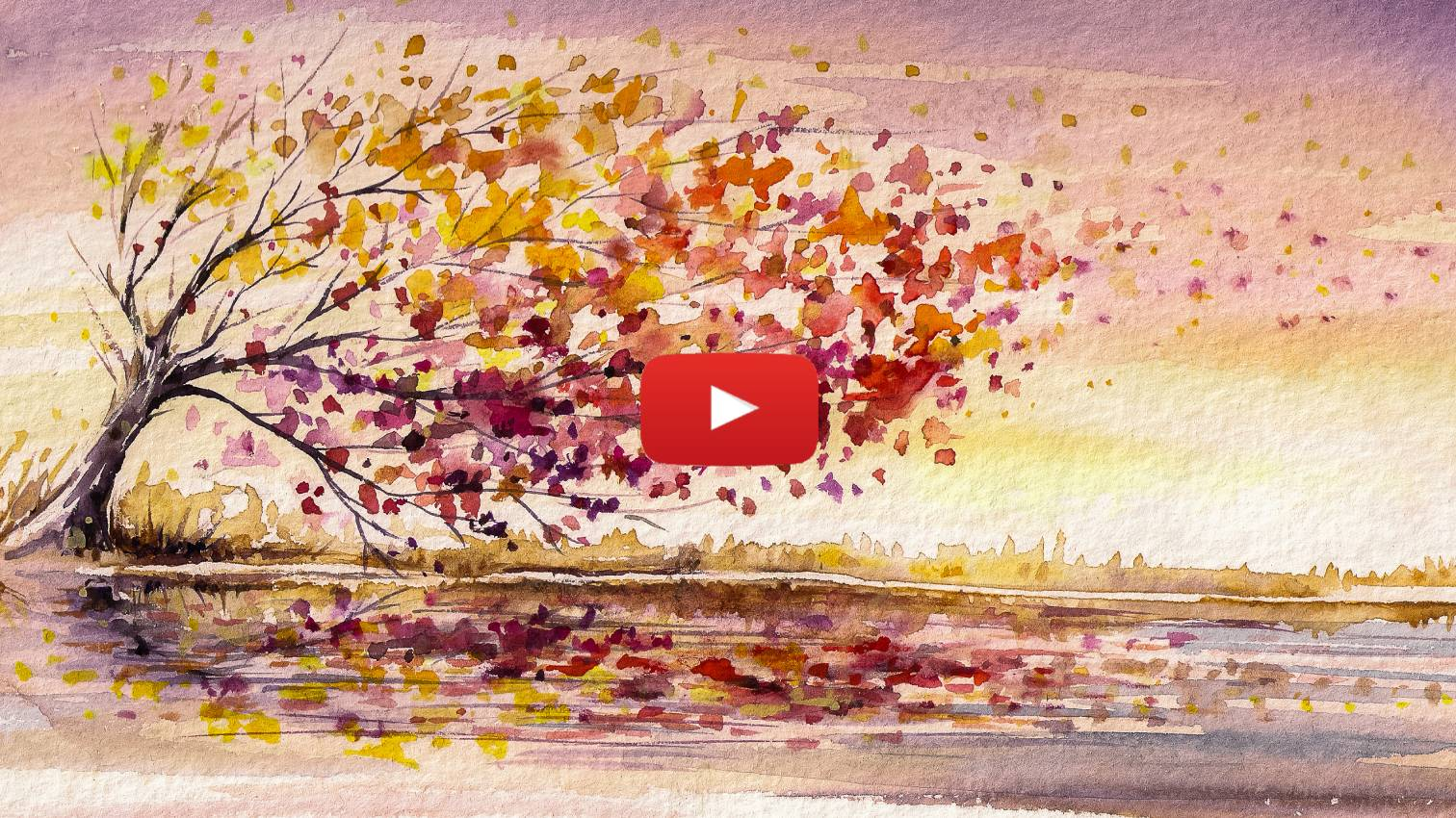 Catch the Wind - Parshat Noach